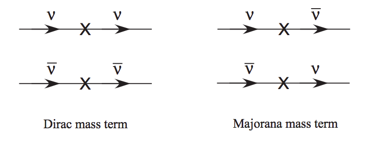 ../_images/dirac-mass-vs-majorana-mass-lines.png